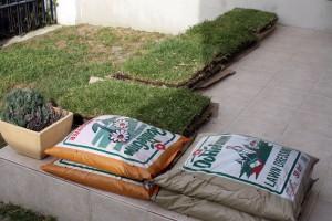 sod pallets - pre installation