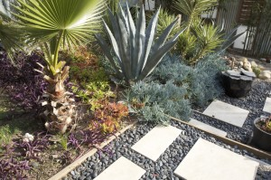 xeriscape - limits water useage