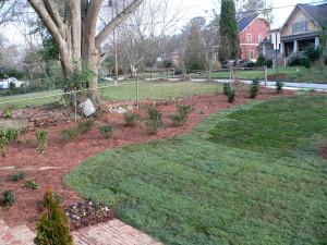 Freshly sodded yard